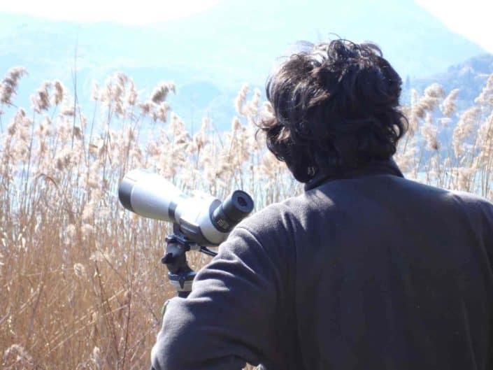 Hattusas SRL - paesaggio ed ecologia - indagini naturlistiche - monitoraggi ecologici - rilievo fauna - lago d'Iseo - Bergamo