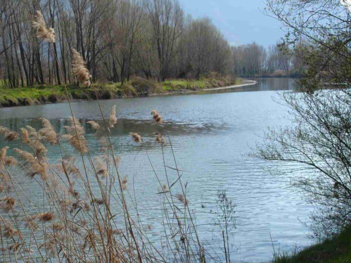 Hattusas SRL - Paesaggio ed Ecologia - relazioni paesaggistiche - Fiume Oglio - Bergamo