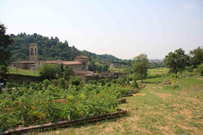 Hattusas SRL - Paesaggio ed Ecologia - relazioni paesaggistiche - Orto Botanico - Bergamo