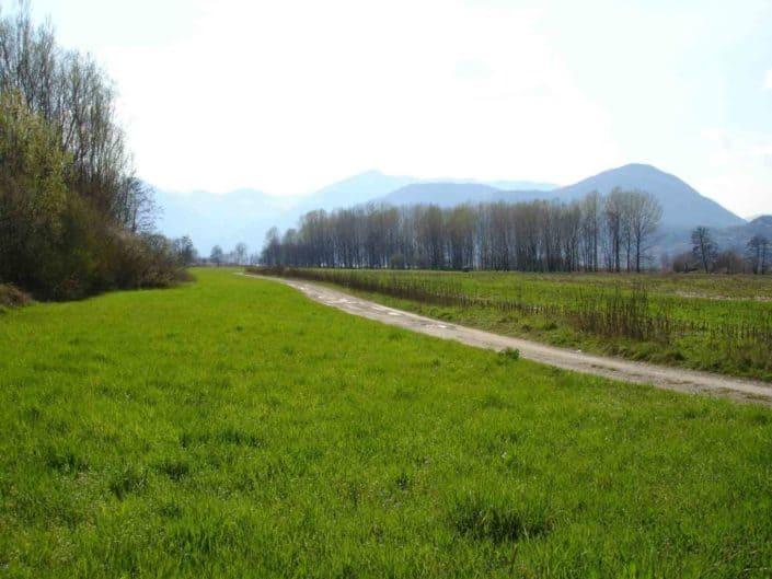Hattusas SRL - Paesaggio ed Ecologia - relazioni paesaggistiche - Sebino - Bergamo