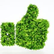 Hattusas - Educazione Ambientale - didattica - notizie - news